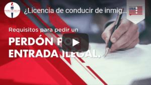 immigrant driver's license