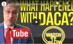 DACA August 2019 updates