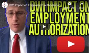 DWI impact on employment authorization